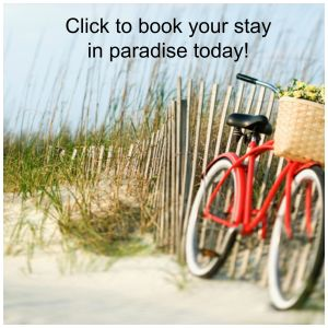 book-your-stay-in-paridise-today